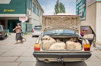 Three Sheeps in a Trunk