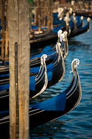Gondolas Bows Floating in the Sea